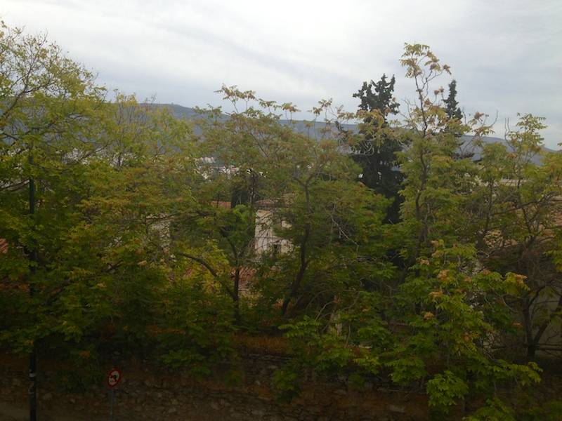 View over the treetops to the mountain range of Ymittos
